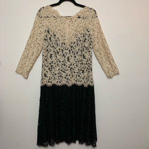 Tadashi Shoji Dresses - Tadashi Shoji Illusion Lace ¾ Sleeve A-Line Dress